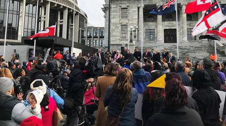 New Zealand to abandon forcible removal of 'at risk' children after anger from Maori families